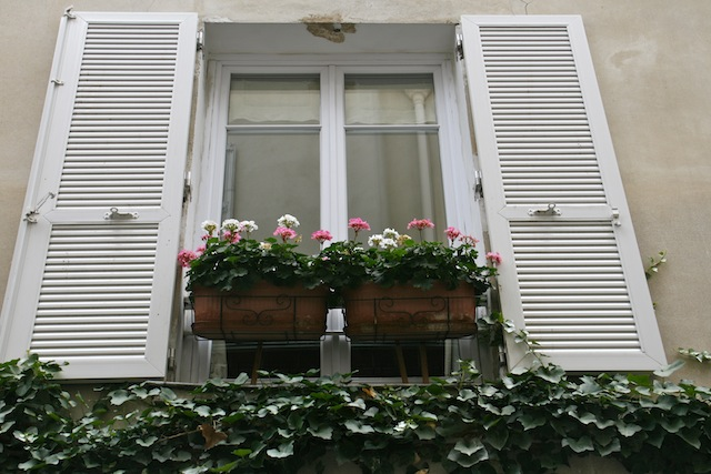 pariswindowflowers
